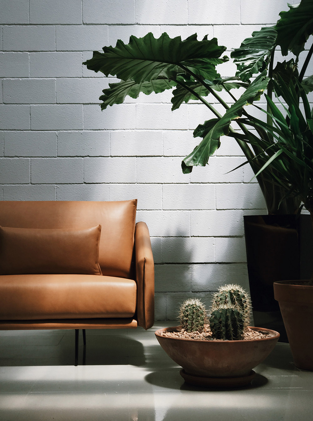 Picture of: Patio Offices Lobby With Costura Sofas In Camel Leather Stua